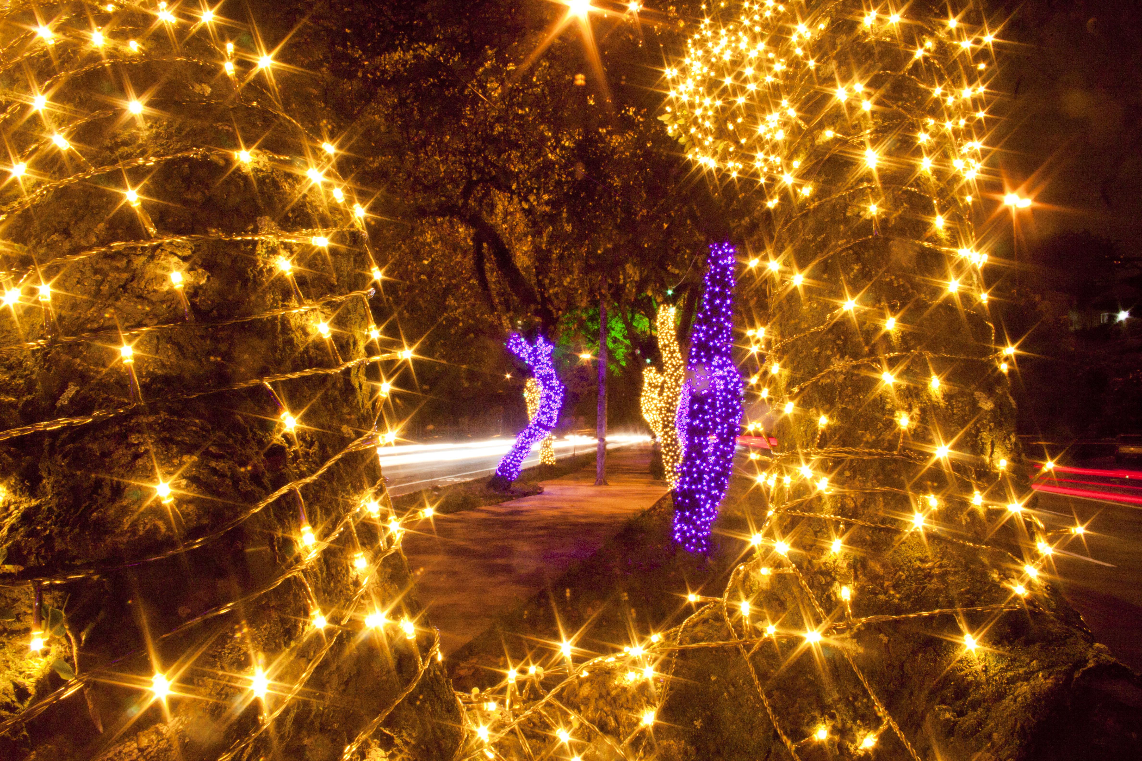 Iluminação na Av. Sumaré em 2013 - Foto: José Cordeiro/ SPTuris.