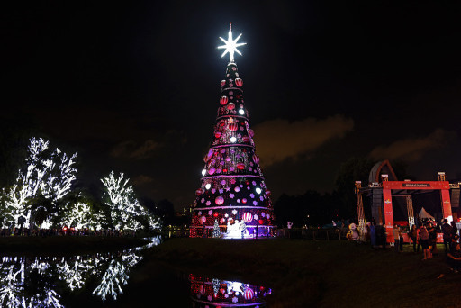 Natal 2018 – Árvore Ibirapuera – São Paulo. Foto: Jose Cordeiro/ SPTuris.